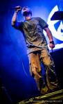 Fotky z Uprising Reggae Festival 2014 - fotografie 113