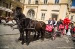 Fotky z brněnského Majálesu od Tomáše - fotografie 36