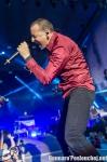 Fotky z Aerodrome festivalu - fotografie 40
