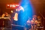 Fotky z festivalu Hrady CZ na Bezdězu - fotografie 155