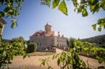 Fotky z Moravských hradů na Veveří - fotografie 4