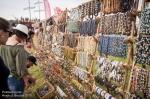 Fotky z festivalu Hrady CZ na Bouzově - fotografie 112