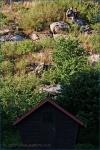 Fotky z Tekway Open Air - fotografie 2