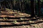 Fotky z Tekway Open Air - fotografie 11