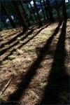 Fotky z Tekway Open Air - fotografie 12