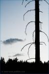 Fotky z Tekway Open Air - fotografie 26