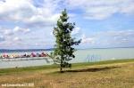 Druhé fotky z festivalu Balaton Sound - fotografie 15
