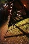Třetí fotky ze Svojšic - fotografie 45