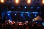 Třetí fotky ze SázavaFestu - fotografie 13