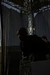 Fotky z brněnského Majálesu - fotografie 80