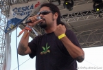 Fotky z druhého dne Rock for People - fotografie 12