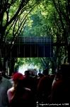 Druhé fotky z Loveparade - fotografie 43