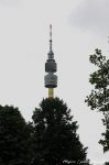 Čtvrté fotky z Loveparade - fotografie 7