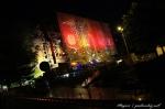 Čtvrté fotky z Loveparade - fotografie 235