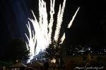Čtvrté fotky z Loveparade - fotografie 299