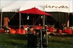 Fotky z festivalu Bažant Pohoda  - fotografie 78