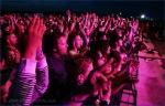 Fotky z festivalu Bažant Pohoda  - fotografie 132