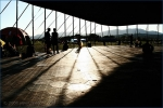 Fotky z festivalu Bažant Pohoda  - fotografie 346