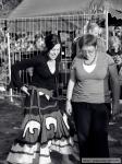 První fotky z Trutnov Open Airu - fotografie 76