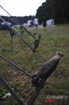 Fotky z příprav festivalu Let it Roll - fotografie 8