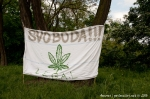 Fotoreport z Million Marihuana March - fotografie 27