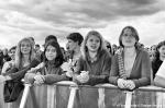 První fotky z festivalu Jamrock - fotografie 24