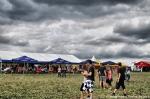 První fotky z festivalu Jamrock - fotografie 29