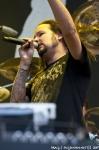 Fotoreport z festivalu Sonisphere - fotografie 253