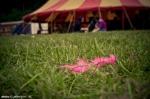 Fotky z festivalu Soundfeer - fotografie 75