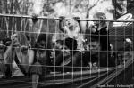 Fotky z Majálesu v Hradci Králové - fotografie 130