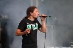 První fotky z festivalu JamRock - fotografie 6