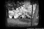 Fotky z festivalu Natruc Kolín - fotografie 24