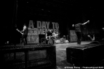Fotky z druhého dne Rock for People - fotografie 34